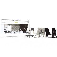 Unisex Geschenkidee zur Geburt eine Baby, Socken 0-12 Monate, Trumpette